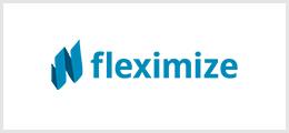 flexmize